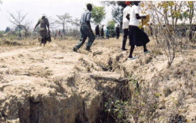 Pour mieux comprendre les causes et conséquences de la désertification